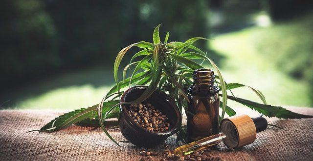 i benefici della cannabis legale